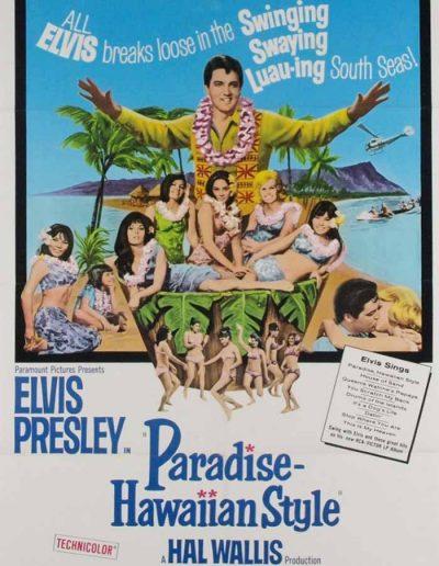 PARADISE,-HAWAIIAN-STYLE